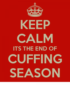 The Cuffing Season is Almost Over, So Get Your Vibrators Tampa Ready! But not just any vibrator will do!